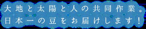 大地と太陽と人の共同作業。日本位一の豆をお届けします。