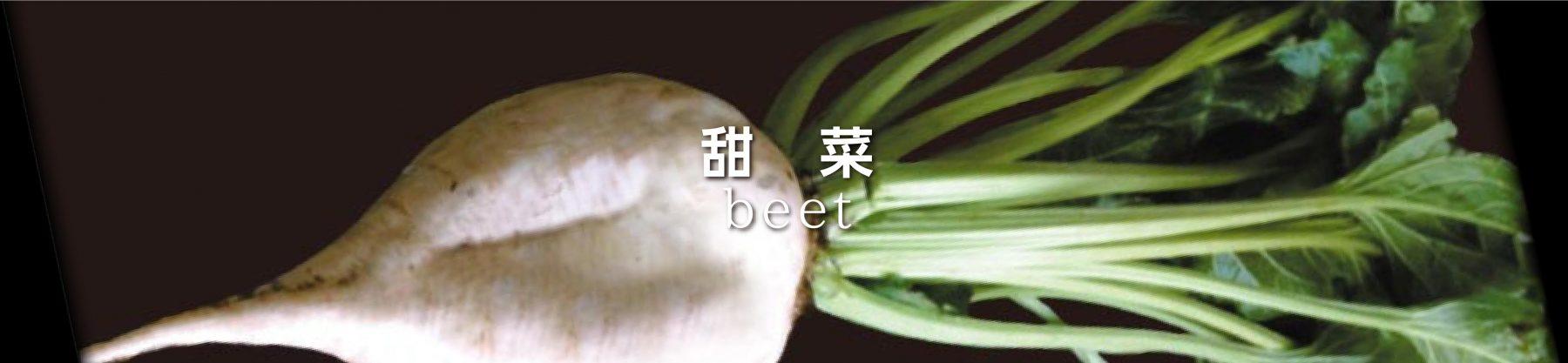 beet5